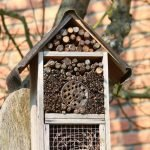 insect-house-benefits-DIY